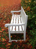 White bench in park Stock Photo