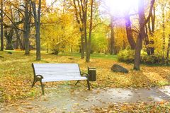 White bench in a park in autumn Royalty Free Stock Photo