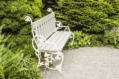 White bench in the park. White bench in the flower park stock photo
