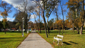 White bench in the park. White bench in the Palic park stock photography