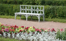White bench in the park. White bench in the Pavlovsk park, Saint- Petersburg royalty free stock images