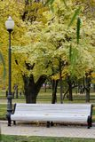 White bench in park, streetlamp. White bench, streetlamp, autumn in city, yellow leaves, fall is coming Stock Photography