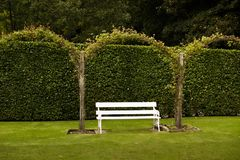 White bench seat in garden. A white painted bench seat set in a formal garden - a hooped wall of green royalty free stock images