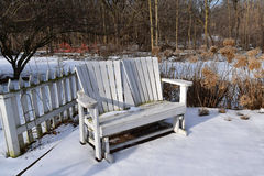 White bench in snow covered garden. White painted benches with fence and dried hydrangeas on sunny,winter day stock photography