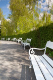 White bench in spring park on Petrin Stock Photography