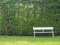 White bench stand alone in the park Stock Photo
