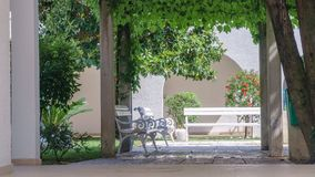 White bench in a summer park surrounded by green bushes and plants royalty free stock photo