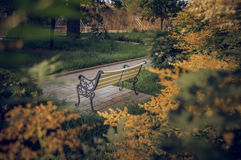 White Bench in the sunset royalty free stock images