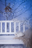 White bench with toy rabbit under shining tree. Royalty Free Stock Photo