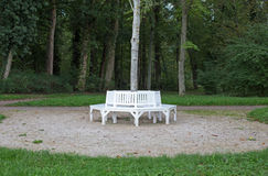 White benches. Grouped around a tree Stock Photography