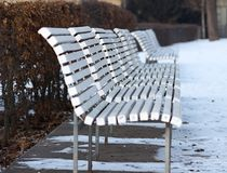 White benches. A long line of white painting benches in a park in winter by hedge Royalty Free Stock Images