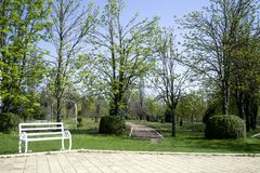 White benches in the park. Beautiful park with white benches along the road. Stock Photo