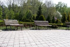 White benches in the park. Beautiful park  with white benches along the road. White benches in the park. Beautiful park with white benches along the road Stock Photo