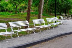 White benches in the park. A white chair in the park Royalty Free Stock Image