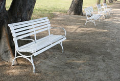 White benches. Row of several white benches Stock Image
