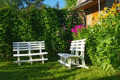 White benches in a secluded corner garden Royalty Free Stock Photo