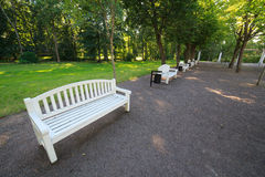 White benches in a summer garden.  Stock Images
