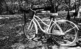 White bicycle Stock Photography