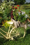 White Bicycle With Flowers Royalty Free Stock Images