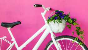 White bicycle on pink wall Stock Photos