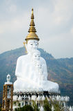 White Big Buddha images with different sizes Royalty Free Stock Photos