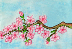 White bird on branch with pink flowers, painting Stock Images