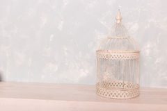 White bird cage on the wooden floor Stock Image