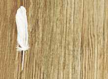 White bird feather on brown wooden background with empty space. White bird feather on brown wooden background with empty space for text.Toned image Stock Images