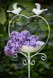 White bird feeder with lilac Royalty Free Stock Photography
