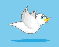 White Bird Flight Royalty Free Stock Image