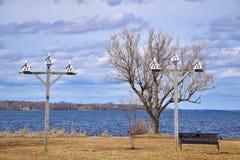 White Birdhouses on Tall Poles Along the Lakeshore Royalty Free Stock Photos