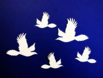 White birds. Paper cutting. Stock Photos