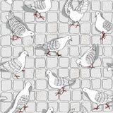 White birds pattern Royalty Free Stock Photo