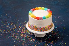 Birthday Cake with Sprinkles royalty free stock images