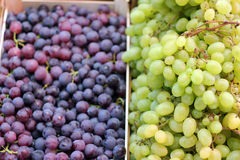 White And Black Autumn Grape. Fresh, ripe grape on the fruit stand for sale. Selective focus Stock Images
