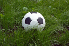 White and black ball for playing soccer in high green grass closeup Royalty Free Stock Photo
