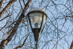 A white and black beautiful street lighting lantern against the blue sky background with white snow and icicle and with. Trees without foliage is in a park in royalty free stock photo