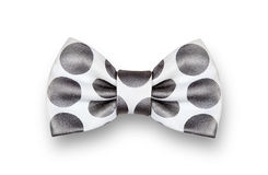 White and black bow tie Stock Photos