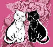 White and black cats. On white paper stock illustration