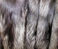 Beautiful colorful natural fox fur royalty free stock images