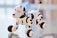 White and Black Dog Robot on Clear Glass Table Stock Photos