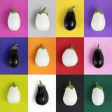 White and black eggplants isolated on colors background. White and black eggplants isolated on colors set background Royalty Free Stock Image