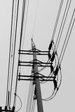 White and black Electric pole. And sky in Thailand Stock Photography