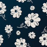 White and black flowers seamless background Royalty Free Stock Image