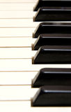 White and Black Keys. Row of White and Black Keys Royalty Free Stock Photo