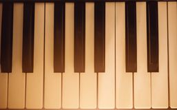White and black keys of the piano Stock Images