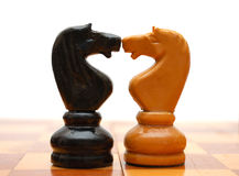 White and black knights on chess board Royalty Free Stock Photography
