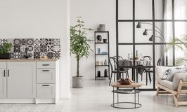 White and black minimal kitchen interior with bog plant in pot and things on coffee table. White and black kitchen interior with bog plant in pot and things on stock photo