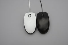 White and black mouses with cables. On grey background stock photos