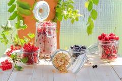 White black red currants gooseberries cherries jars preparations Stock Photography